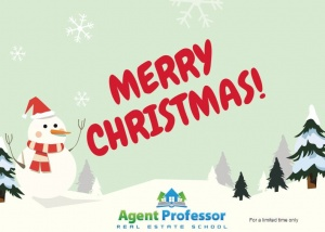 Merry Christmas from Agent Professor!